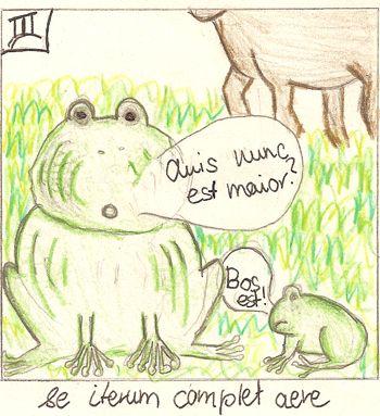 Der zerplatzte Frosch und der Ochse 2